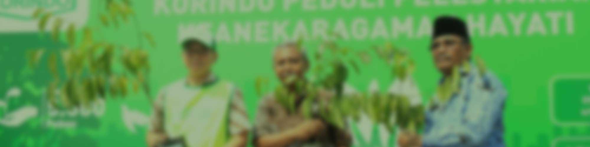 Korindo Lakukan Penghijauan di Jakarta